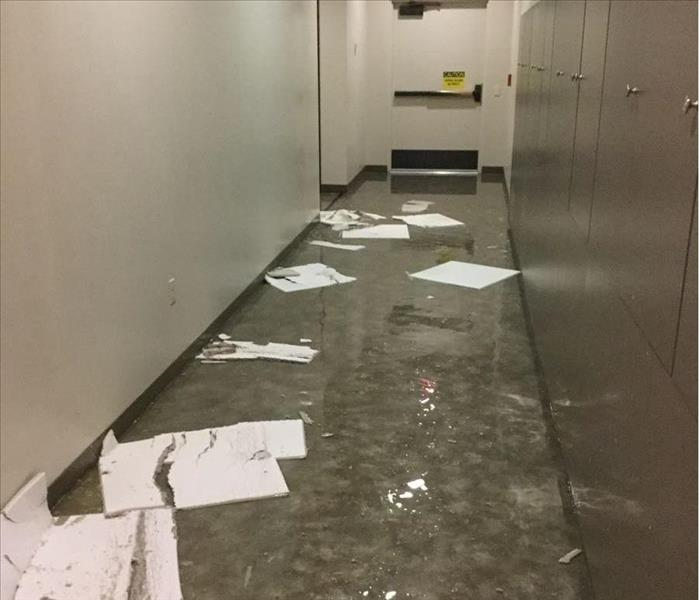 gray hallway with water and broken ceiling tiles on floor