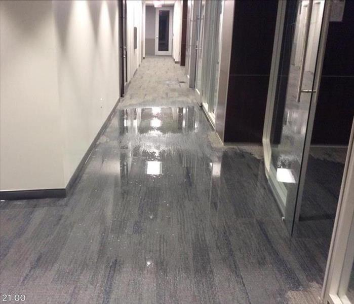 hallway with gray carpet and white walls with water on the ground
