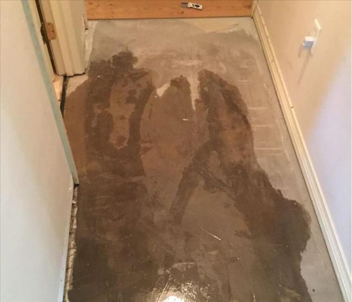 Water damaged hallway with wood flooring removed