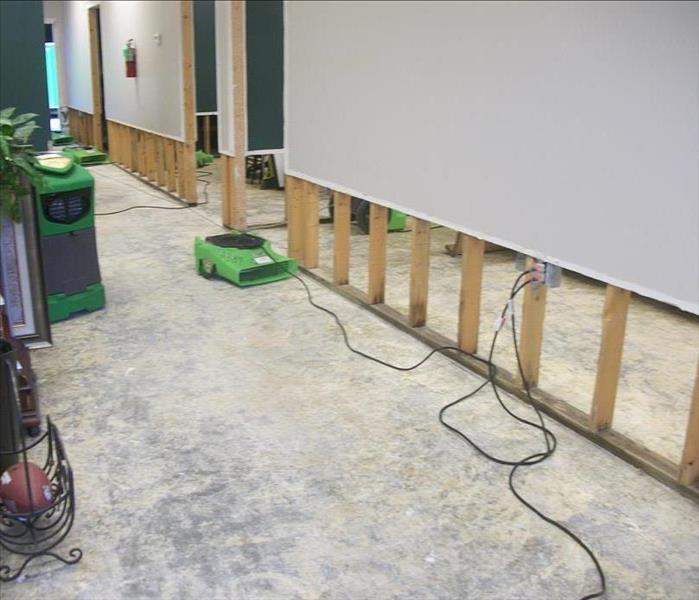 green fan drying wall that has a two foot flood cut exposing studs