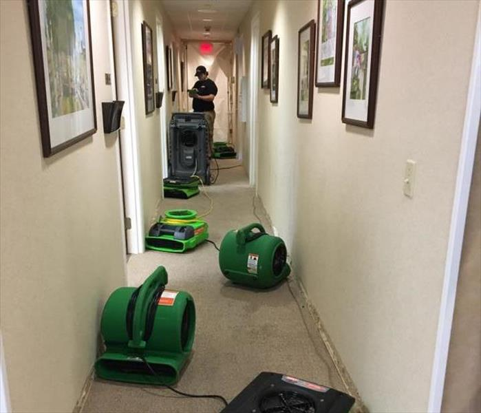 green fans in hallway with man standing at the end of hallway