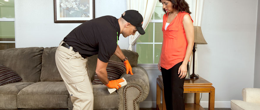 Covington, LA carpet upholstery cleaning